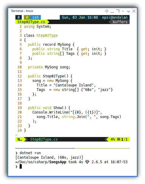 .NET C#: The Song Record Structure Type