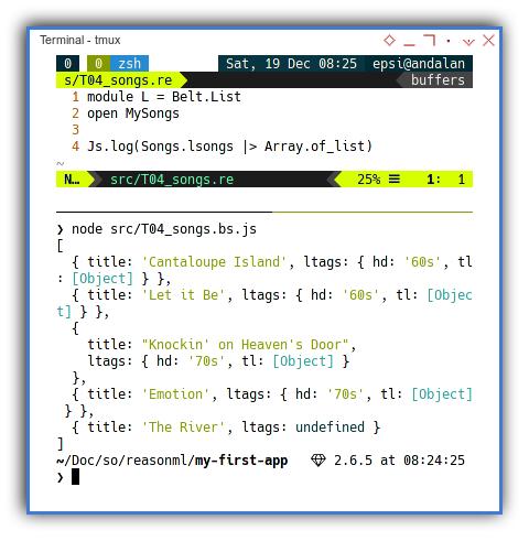 ReasonML: Using The Module